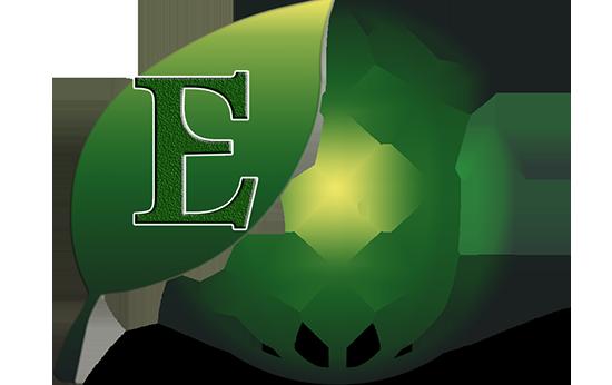 EHNet, Inc.